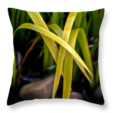 Five Draped Leaves Throw Pillow