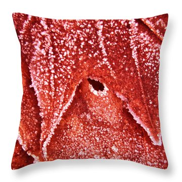 Five O'clock Frost Throw Pillow by Gwyn Newcombe