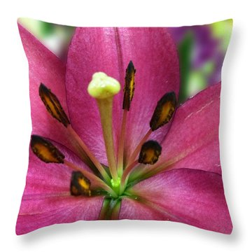 Five Points Throw Pillow by Carlos Avila