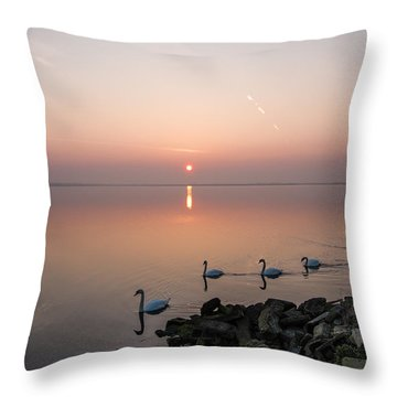 Five Swans At Dawn Throw Pillow