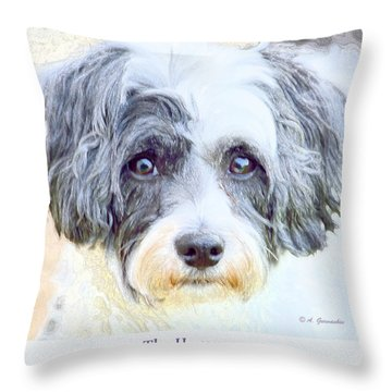 Five Year Old Havanese Dog Throw Pillow