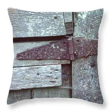 Fixed Throw Pillow by Laurie Stewart