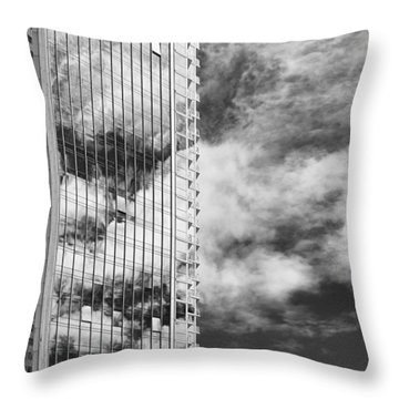 Fla-150531-nd800e-25123-bw Throw Pillow