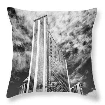 Fla-150531-nd800e-25126pa31-bw Throw Pillow
