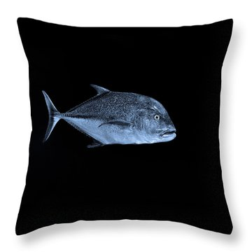 Fla-150811-nd800e-26052-bw-blue Throw Pillow