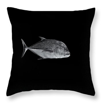 Fla-150811-nd800e-26052-bw-selenium Throw Pillow