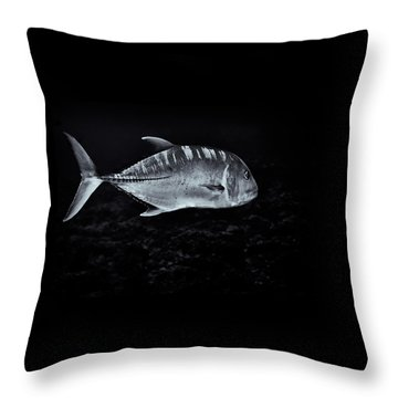 Fla-150811-nd800e-26063-bw-selenium Throw Pillow