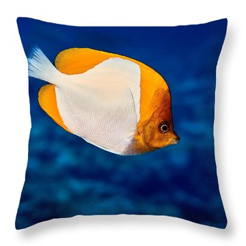 Fla-150811-nd800e-26087-color Throw Pillow