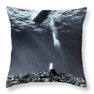 Fla-151028-nd800e-107-bw-selenium Throw Pillow