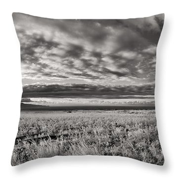 Fla-160225-nd800e-381pa85-ir-cf Throw Pillow