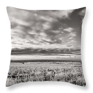 Fla-160225-nd800e-388pa91-ir-cf Throw Pillow