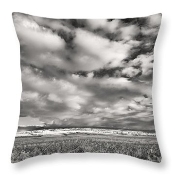 Fla-160225-nd800e-394-ir-cf Throw Pillow