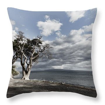 Fla-150717-nd800e-25953-color Throw Pillow