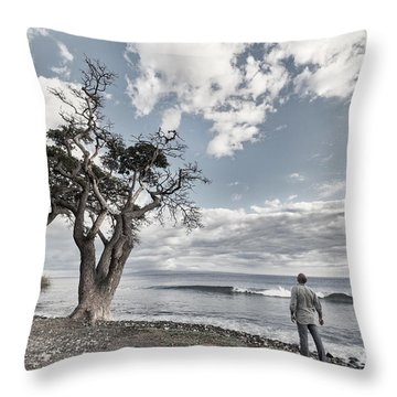 Fla-150717-nd800e-25974-color Throw Pillow