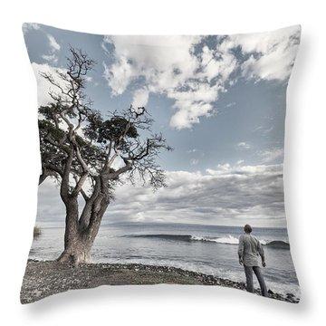 Fla-150717-nd800e-25974-color Throw Pillow by Fernando Lopez Arbarello