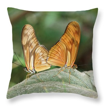 Throw Pillow featuring the photograph Flambeau Butterfly - 2 by Paul Gulliver
