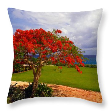 Flamboyant Tree In Grand Cayman Throw Pillow by Marie Hicks
