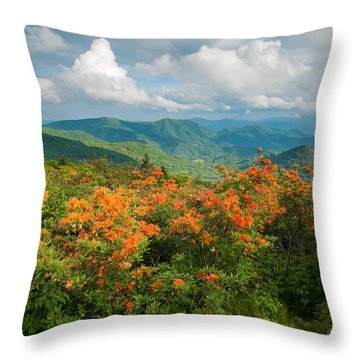 Flame Azaleas Roan Highlands Appalachian Trail Throw Pillow
