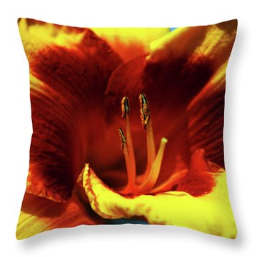 Flame Daylily 1238 H_2 Throw Pillow