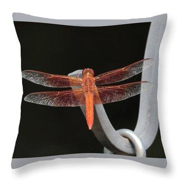 Flame Skimmer Throw Pillow