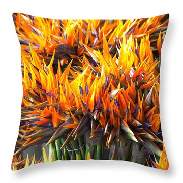 Flamin' Birds Throw Pillow