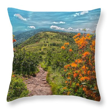 Flaming Azaleas On The At Throw Pillow