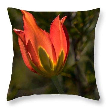Flaming Beauyy Throw Pillow