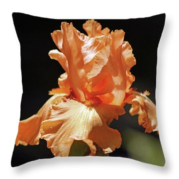 Throw Pillow featuring the photograph Flaming Floral by Deborah  Crew-Johnson