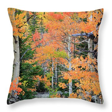 Throw Pillow featuring the photograph Flaming Forest by David Chandler