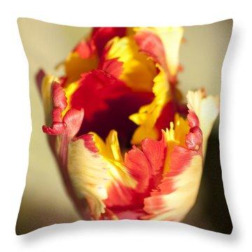 Flaming Parrot Throw Pillow