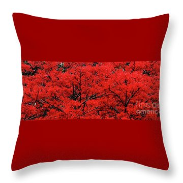 Throw Pillow featuring the photograph Flaming Red Panorama II By Kaye Menner by Kaye Menner