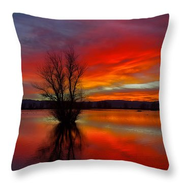 Flaming Reflections Throw Pillow