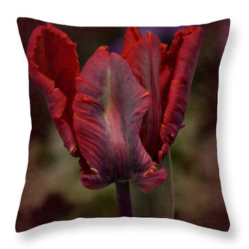 Throw Pillow featuring the photograph Flaming Tulip by Richard Cummings