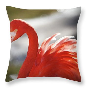 Flamingo 2 Throw Pillow by Marie Leslie