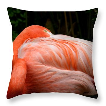 Flaming O Throw Pillow