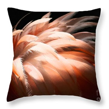 Flamingo Feathers Throw Pillow