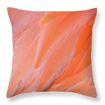 Throw Pillow featuring the photograph Flamingo Flow 4 by Michael Hubley