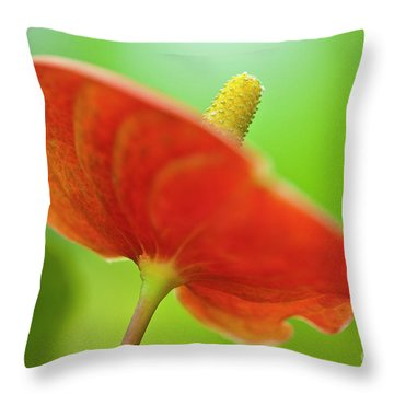 Flamingo Flower 2 Throw Pillow by Heiko Koehrer-Wagner