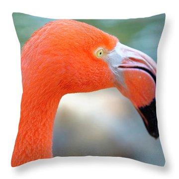 Flamingo Portrait Throw Pillow