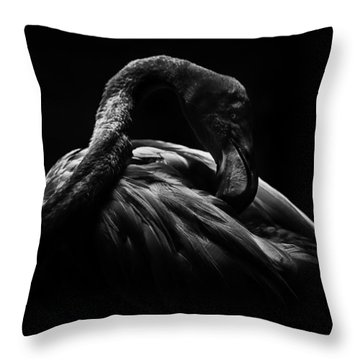 Throw Pillow featuring the photograph Flamingo by Ryan Smith