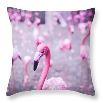 Throw Pillow featuring the photograph Flamingo by Setsiri Silapasuwanchai