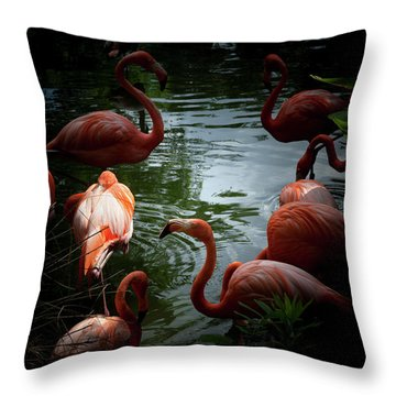 Throw Pillow featuring the photograph Flamingos by Eric Christopher Jackson