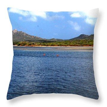 Flamingo's Home Throw Pillow