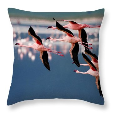 Flamingos In Flight-signed Throw Pillow by J L Woody Wooden