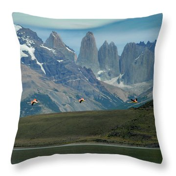 Flamingos Over Lago Nordenskjold Throw Pillow