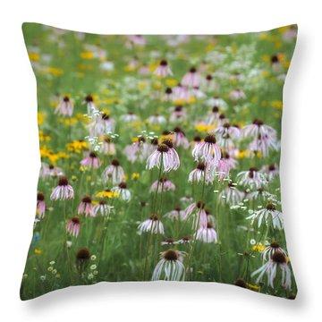 Flanagan Prairie Purple Coneflowers Throw Pillow