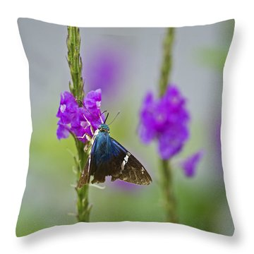 Flasher On Weed... Throw Pillow by Nina Stavlund