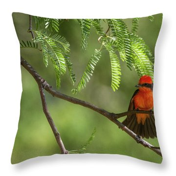 Flashy Vermillion Throw Pillow