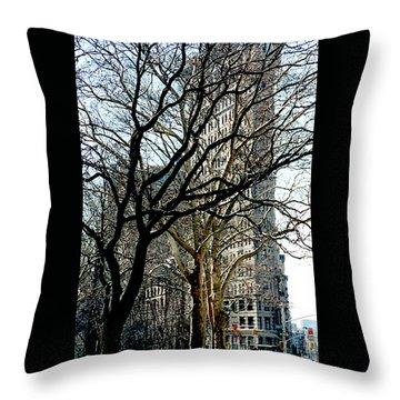 Flatiron Building Throw Pillow
