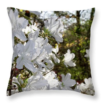 Throw Pillow featuring the photograph Fleeting Beauty by Chris Scroggins